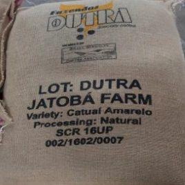Brazil Fazenda Dutra Jatoba