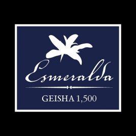 Panama La Esmeralda 1500
