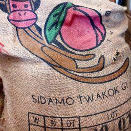 Ethiopian Sidamo Twakok G1
